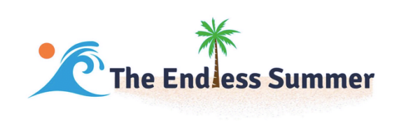 The Endless Summer Google Shopping Course by Sharad Thaper