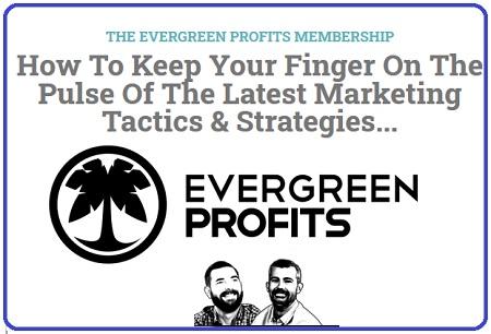 Hustle & Flowchart - Evergreen Profits Newsletter 2020-2021