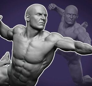 Dynamic Male Anatomy for Artists in Zbrush : Make Realistic 3D Human Model