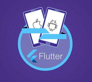 Flutter & Dart – The Complete Guide 2021 Edition (Update 05/2021)