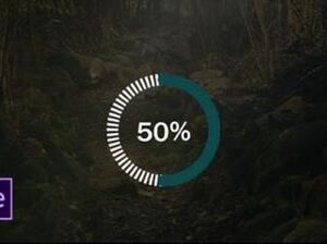 Adobe After Effects Infographics & Data Visualization