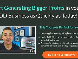 AlgoExpert + SystemsExpert whole video course