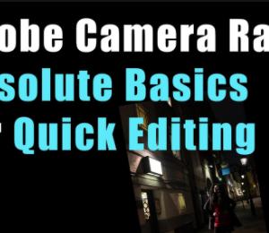 Adobe Camera Raw Absolute Basics For Quick Editing
